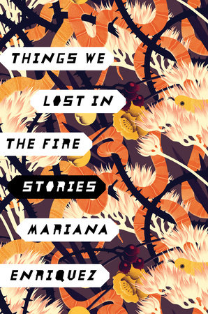 The cover of the book Things We Lost in the Fire