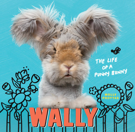 Wally by Molly Prottas