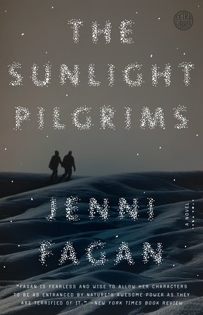 The Sunlight Pilgrims Book Cover Picture