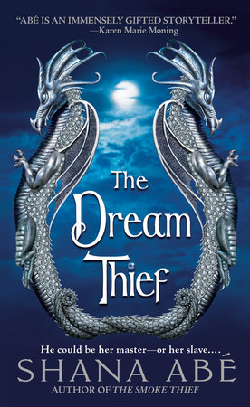 The Dream Thief by Shana Abe