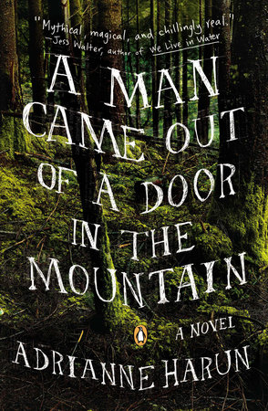 A Man Came Out of a Door in the Mountain