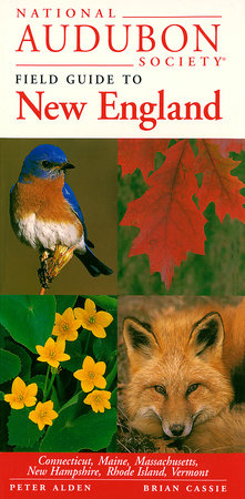 National Audubon Society Field Guide to New England by NATIONAL AUDUBON SOCIETY
