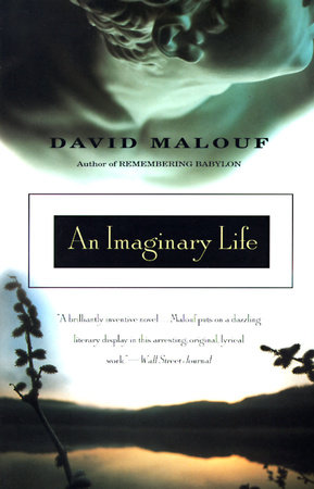 An Imaginary Life