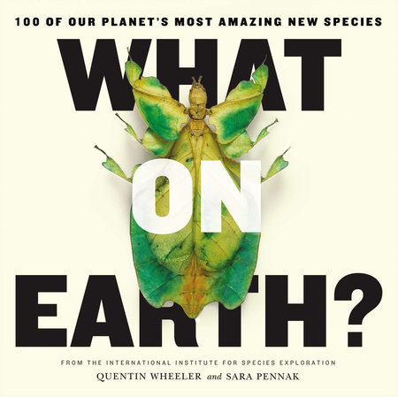 What on Earth? by Quentin Wheeler and Sara Pennak
