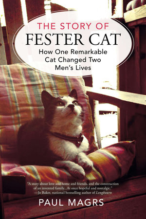 The Story of Fester Cat