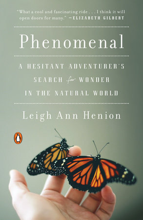 Phenomenal by Leigh Ann Henion