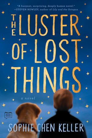 The cover of the book The Luster of Lost Things
