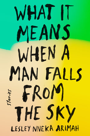 The cover of the book What It Means When a Man Falls from the Sky
