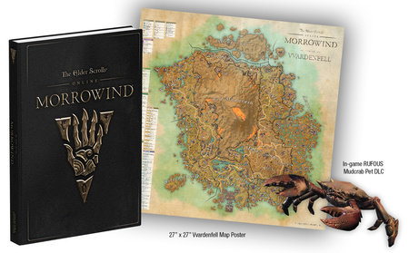 The Elder Scrolls Online: Morrowind by David Hodgson and Michael Owen