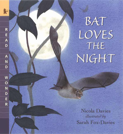 Bat Loves the Night by Nicola Davies