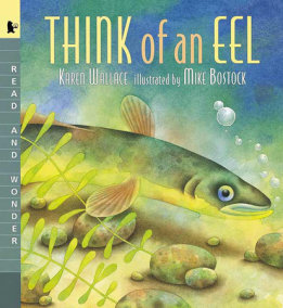 Think of an Eel Big Book