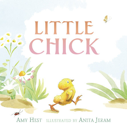 Little Chick by Amy Hest