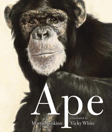Ape by Martin Jenkins