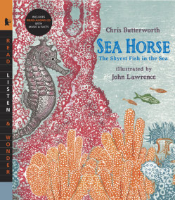 Sea Horse with Audio