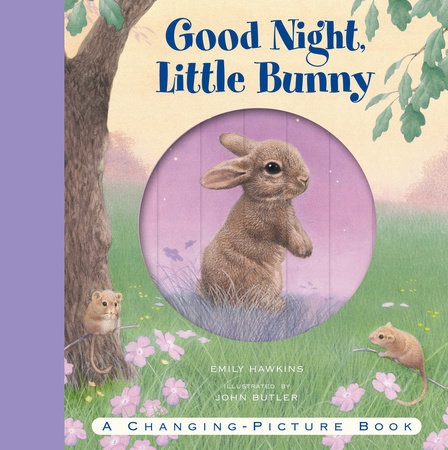 Good Night, Little Bunny by Emily Hawkins