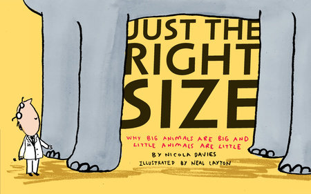 Just the Right Size by Nicola Davies