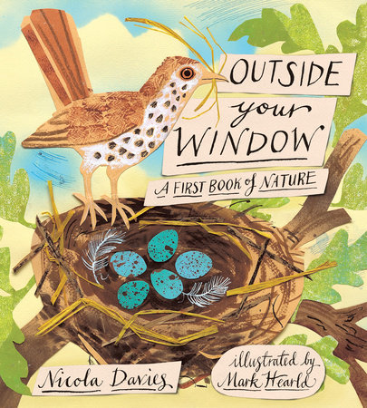 Outside Your Window by Nicola Davies