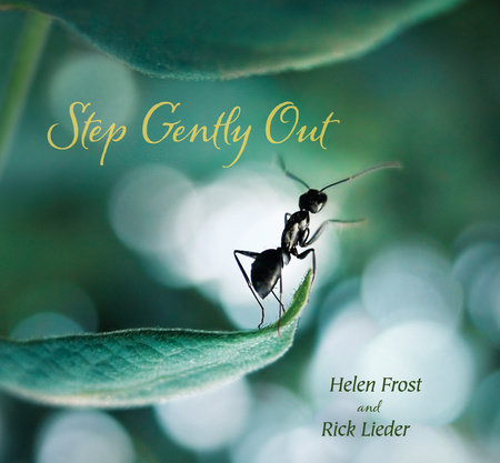 Step Gently Out by Helen Frost