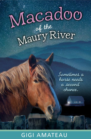 Macadoo: Horses of the Maury River Stables by Gigi Amateau