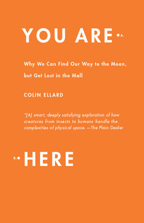 You Are Here by Colin Ellard