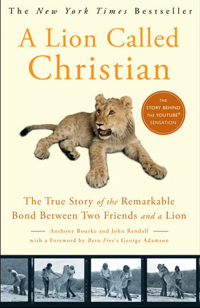 A Lion Called Christian by Anthony Bourke and John Rendall