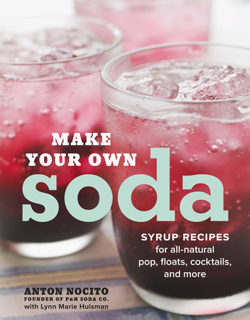 Make Your Own Soda by Anton Nocito and Lynn Marie Hulsman