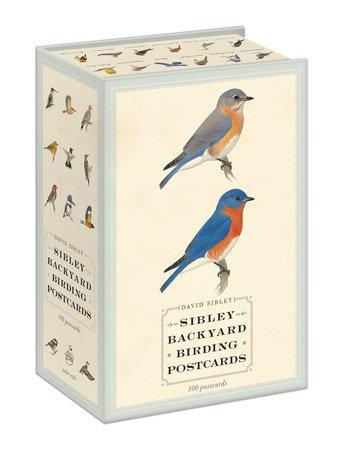 Sibley Backyard Birding Postcards by David Sibley