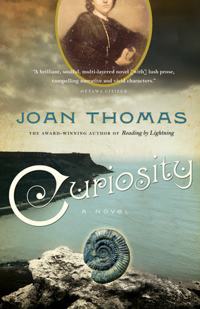 Curiosity by Joan Thomas