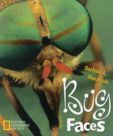 Bug Faces by Darlyne A. Murawski