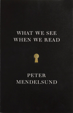 What We See When We Read by Peter Mendelsund