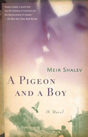 The cover of the book A Pigeon and a Boy