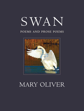 Swan by Mary Oliver