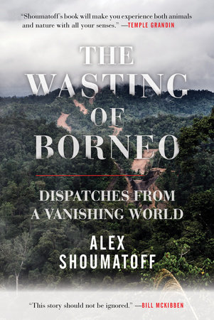 The Wasting of Borneo by Alex Shoumatoff