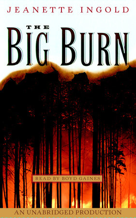The Big Burn by Jeanne Ingold