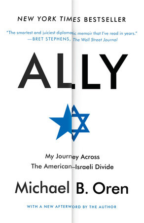 Ally Book Cover Picture