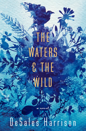 The cover of the book The Waters & The Wild