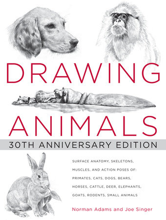 Drawing Animals