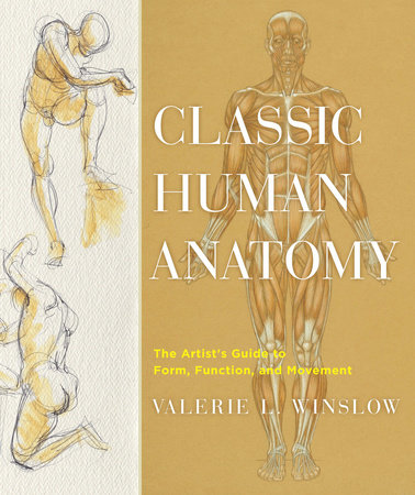 Classic Human Anatomy by Valerie L. Winslow