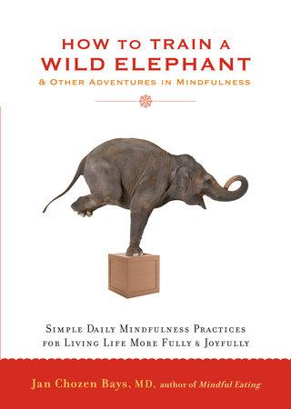 How to Train a Wild Elephant by Jan Chozen Bays