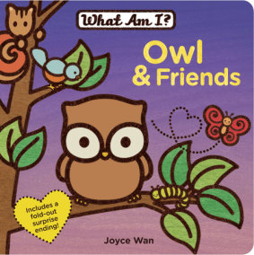 Owl & Friends