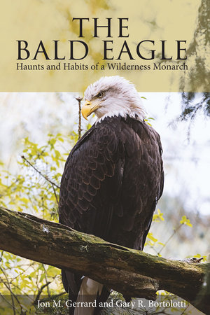 The Bald Eagle by Jon M. Gerrard and Gary R. Bortolotti