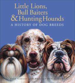 Little Lions, Bull Baiters & Hunting Hounds
