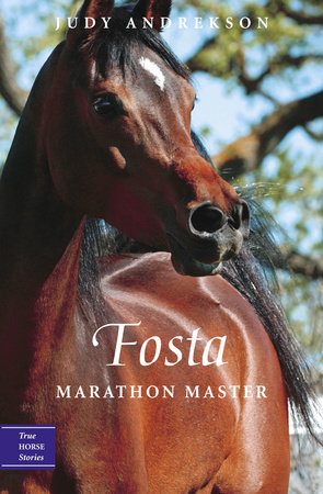 Fosta by Judy Andrekson