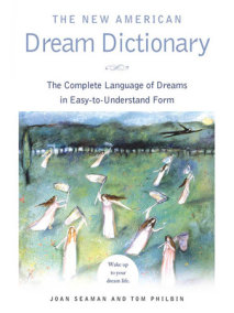 The New American Dream Dictionary