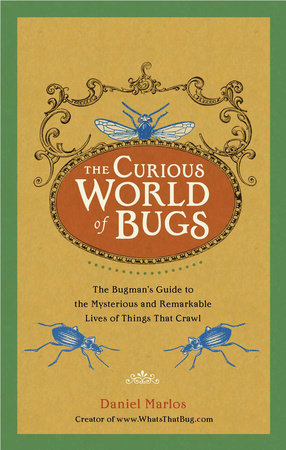The Curious World of Bugs by Daniel Marlos
