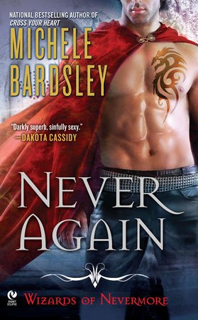 Never Again by Michele Bardsley