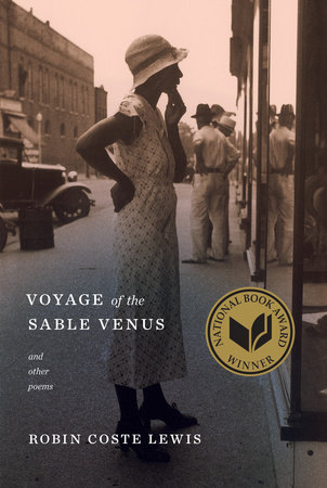 The cover of the book Voyage of the Sable Venus