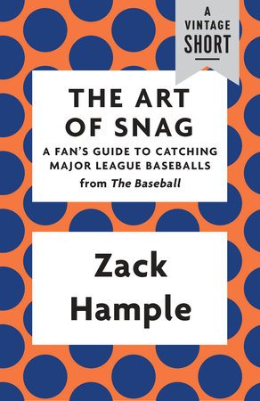 The Art of Snag Book Cover Picture