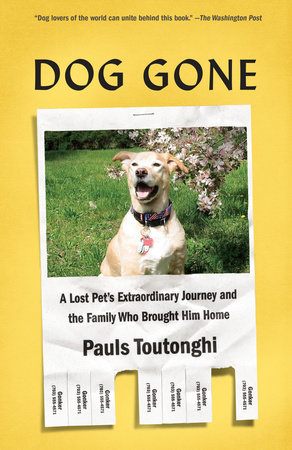 Dog Gone by Pauls Toutonghi