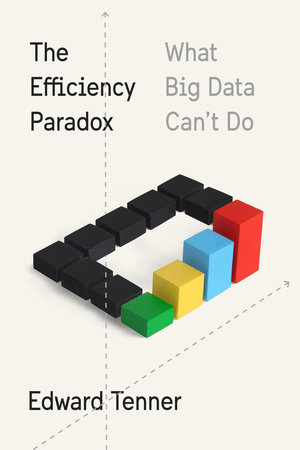 The cover of the book The Efficiency Paradox